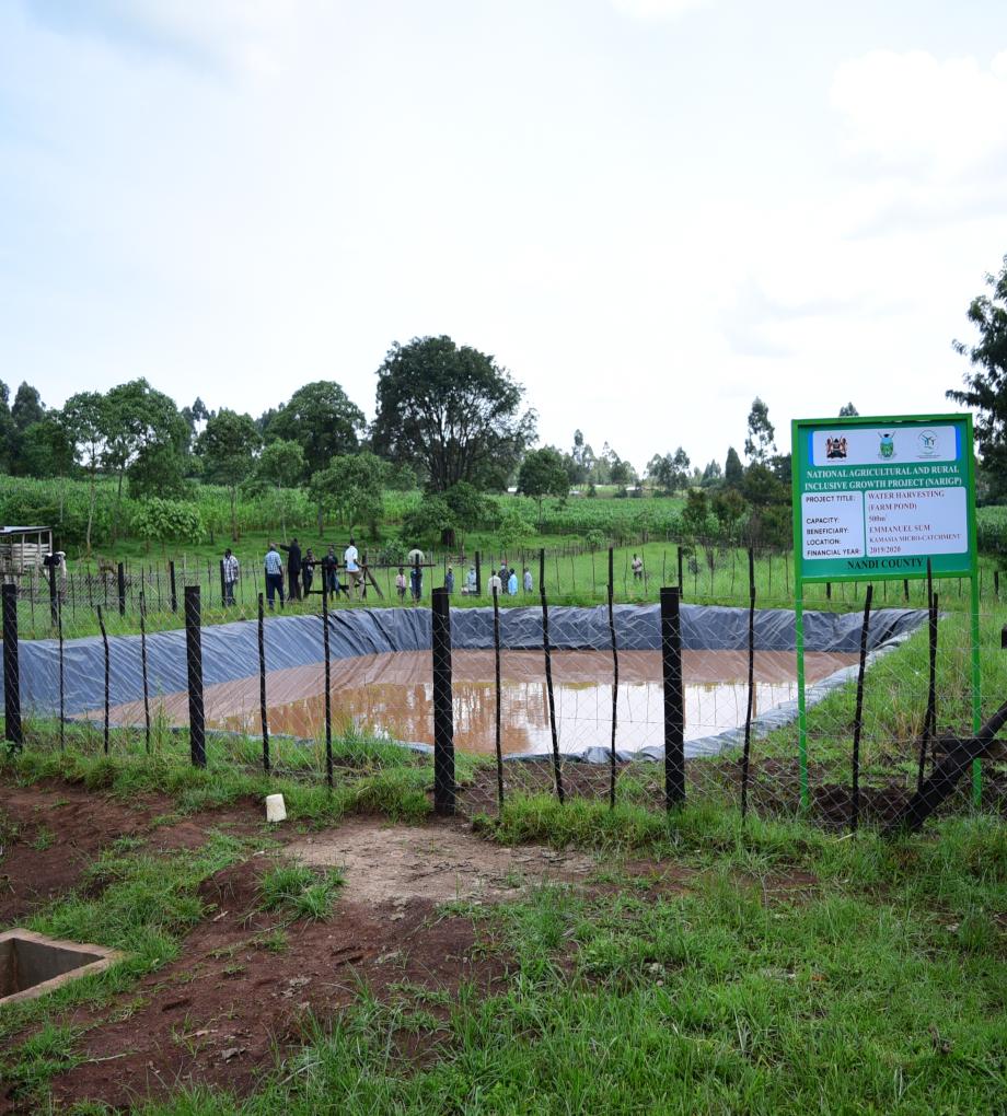 Nandi project
